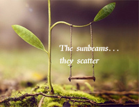 The Sunbeams... They Scatter-Yiruma