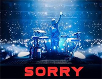 Sorry-Alan Walker ft ISAK